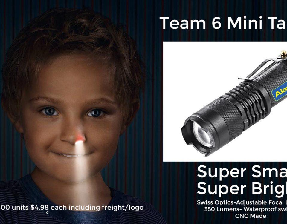 team 6 mini tactical flashlight
